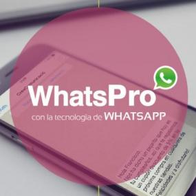 WhatsPro