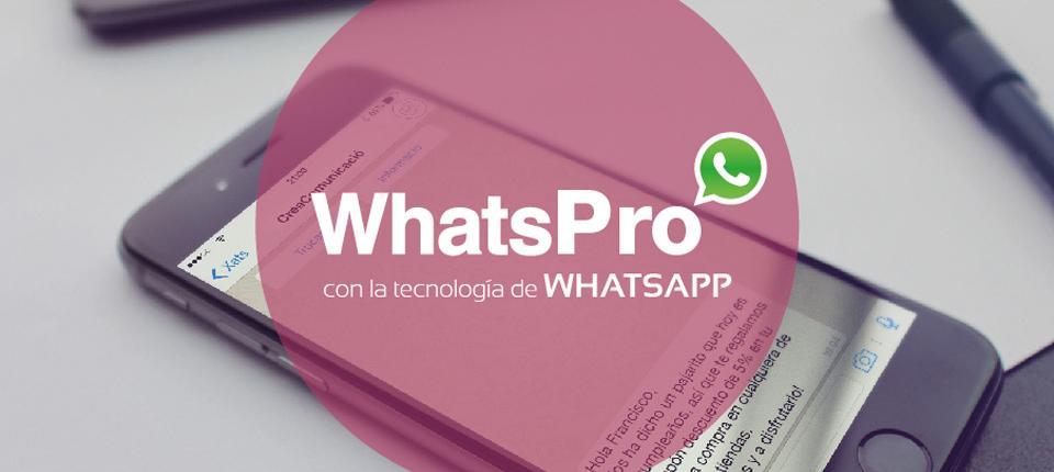 Nuevo WhatsApp para empresas: WhatsPro
